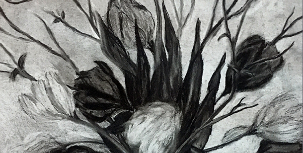 Charcoal Drawing of Flowers in Vase